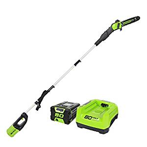 Top 10 Best Cordless Pole Saws in 2020 Reviews