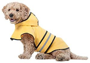 Top 10 Best Dog Raincoat Reviews in 2020 – Buyer's Guide