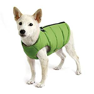 best dog raincoat