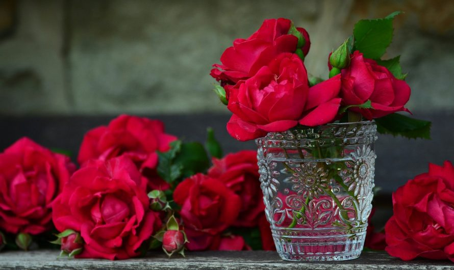 4 Steps to Follow Before Making Online Flowers Delivery