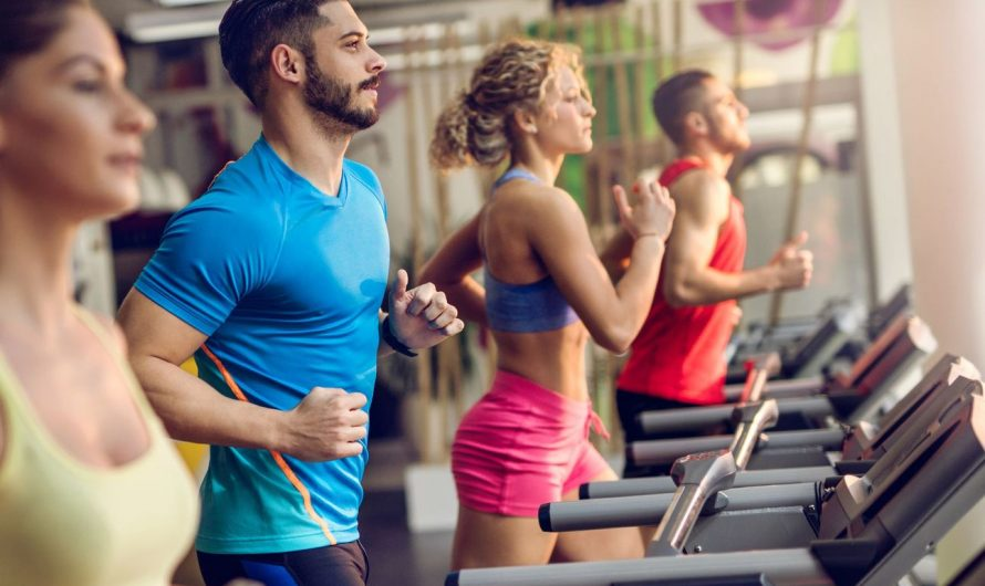 Top 4 Best Cardio Machine for Weight Loss