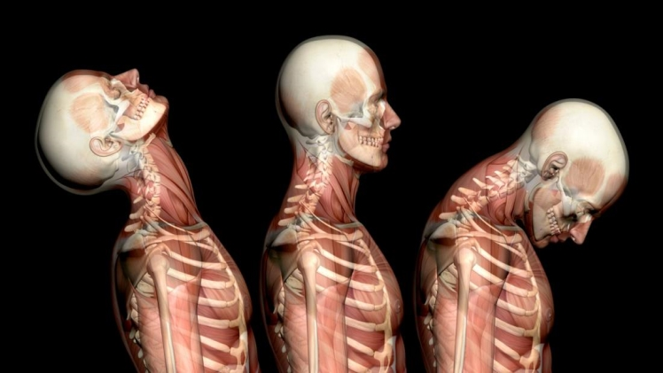 The Best Treatment for Your Whiplash Injury
