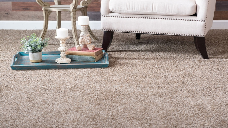8 Tips for Carpet Cleaning You Must Know (Carpet Bright UK)